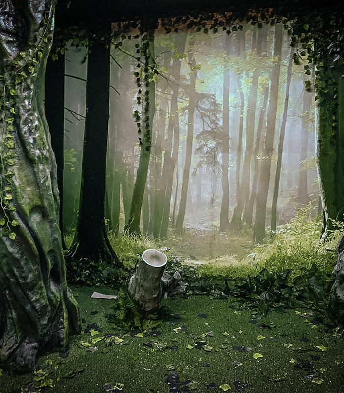 Bosque sala de escape salvemos el planeta para BBK en colonias de Pedernales